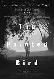 دانلود فیلم پرنده رنگین